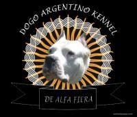 De Alfa Fiera - Dogo Argentino