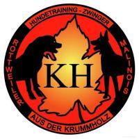 cuccioli Rottweiler altissima genealogia